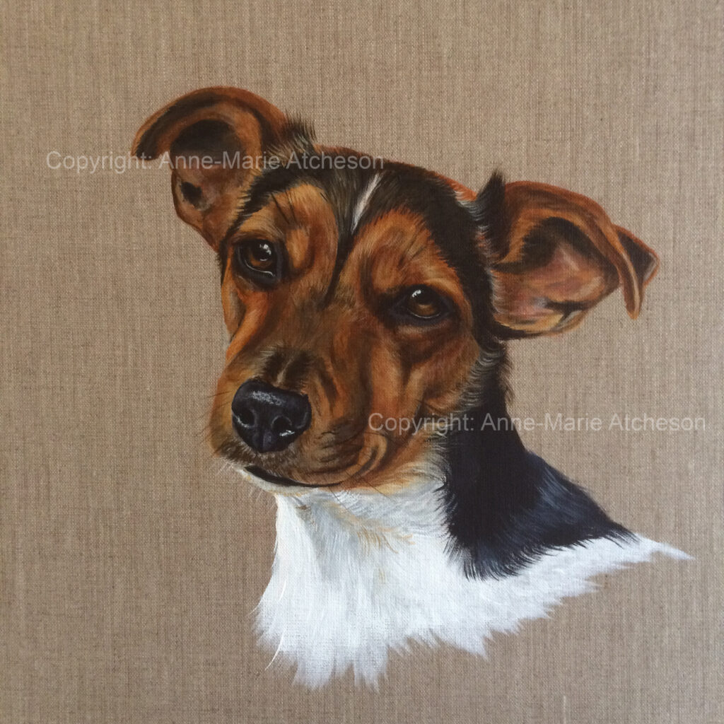 Commission Dogs head canvas