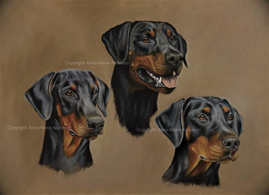 Commission three dog portrait