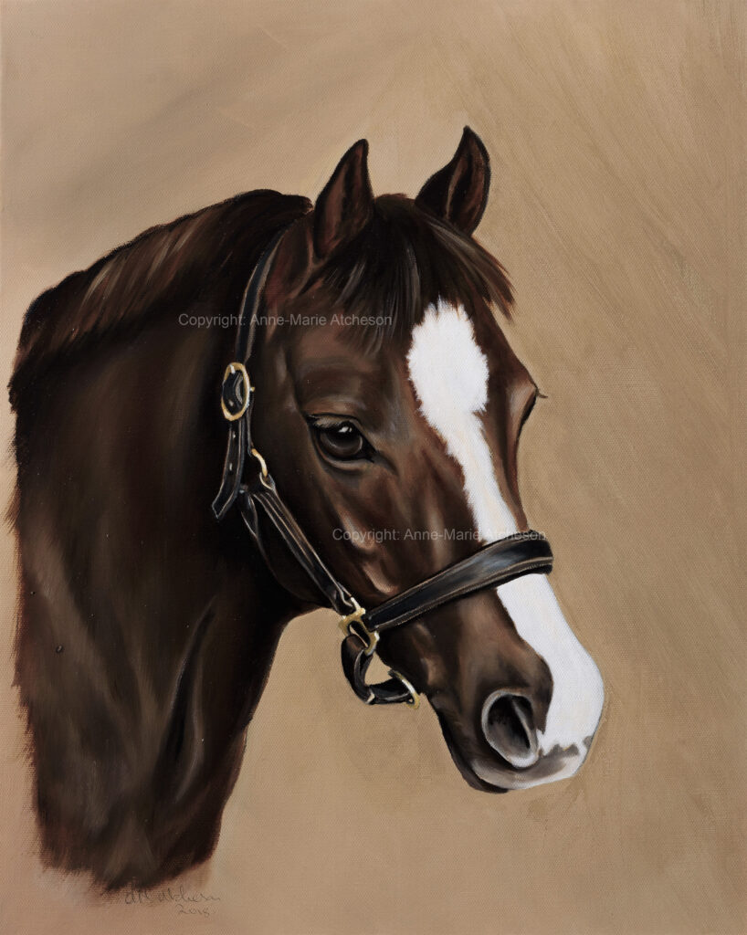 Commission horses head