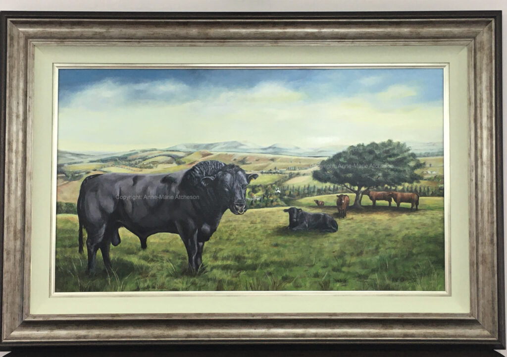 Commission painting of Bulls in field