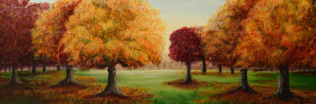 Commission parkland
