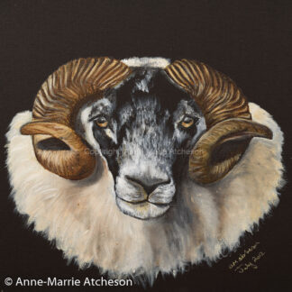 Blackie Tup Painting on Wooden Plaque