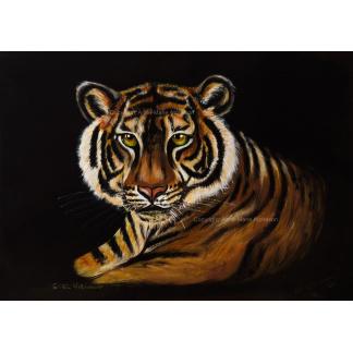 Ever Vigilant Tiger Canvas print