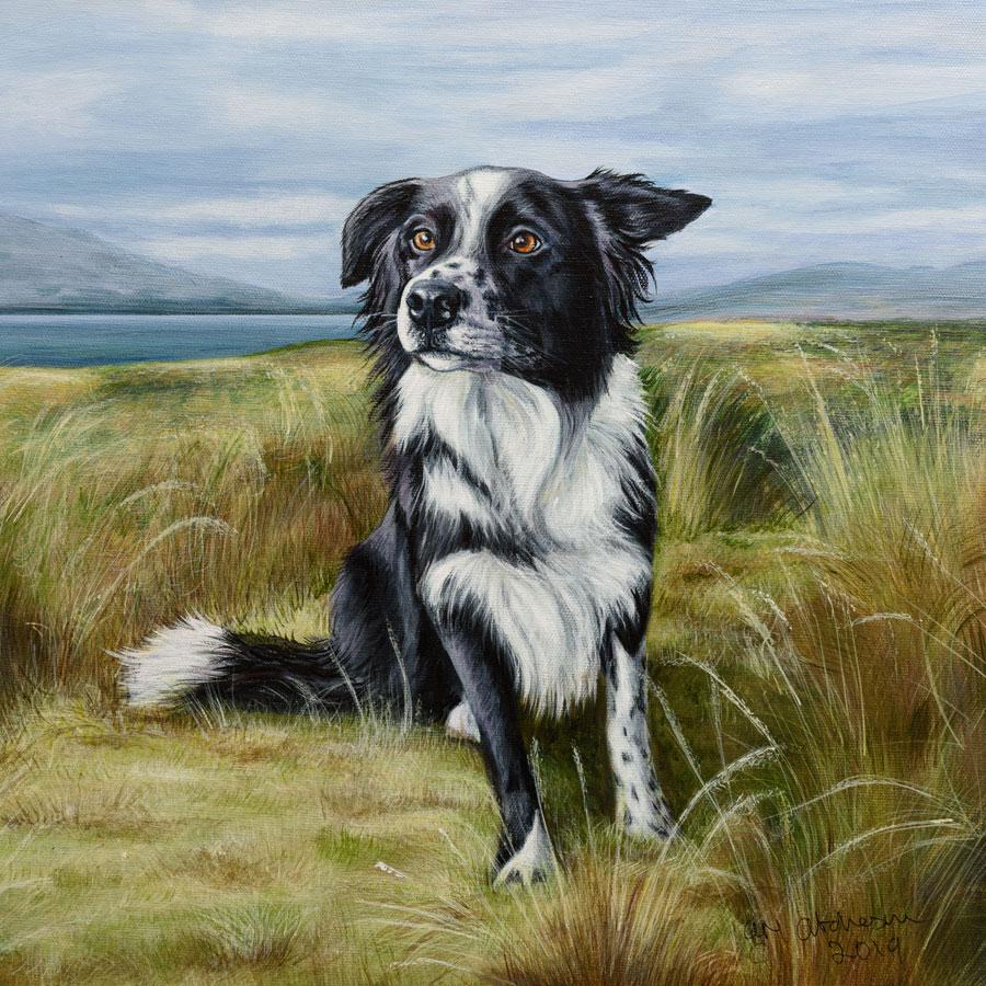 image of dog amongst the grass