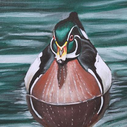 wood duck on the sea menu thumbnail